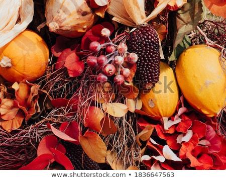jaune · laisse · radeau · boueux · rivière · automne - photo stock © neirfy