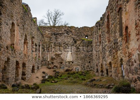 Wall and grounds of a European Castle Stock photo © wildnerdpix