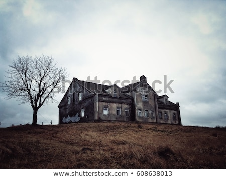 Old house in the hill Stock photo © homydesign