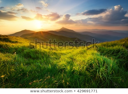 sunrise in the mountains in summer Stock photo © alinamd