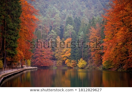 Saxon Switzerland autumn landscape Stock photo © w20er