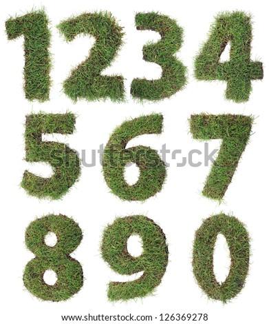 eco · imzalamak · çim · yalıtılmış · beyaz · doğa - stok fotoğraf © frameangel