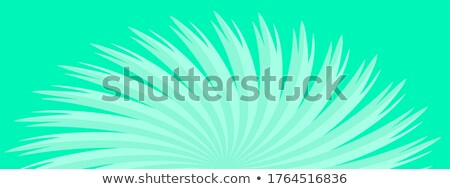 緑色の葉 スポットライト 太陽 森林 詳細 水 ストックフォト © meinzahn