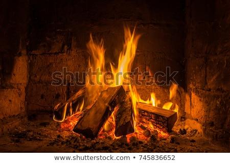 камин огня дрова сжигание горизонтальный Сток-фото © milsiart