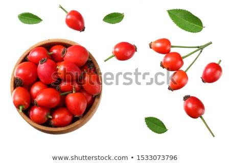 Ripe rosehip berries stock photo © olandsfokus