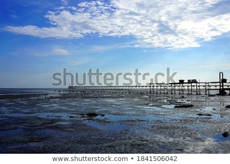 Spiaggia mattina luce Malaysia acqua legno Foto d'archivio © tang90246