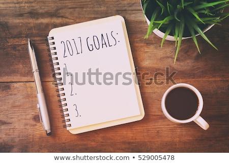 2017, new business year resolutions Stock photo © stevanovicigor