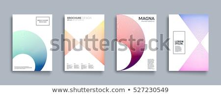 минимальный дизайна геометрический исследование успех Сток-фото © SArts