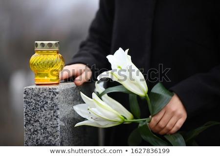 Gelb Lilie Blume weiblichen Hand weiß Stock foto © OleksandrO