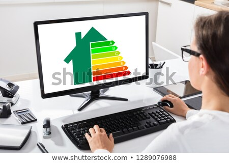 Businesswoman Using Computer With Energy Efficiency Chart Stock photo © AndreyPopov