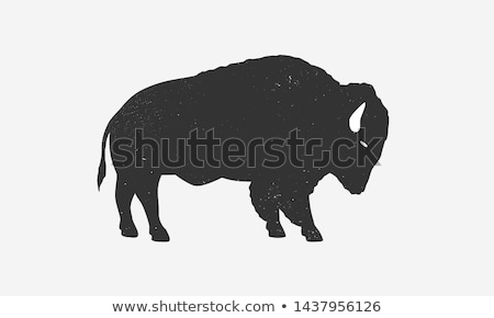 retro standing bison silhouette logo stock photo © barsrsind