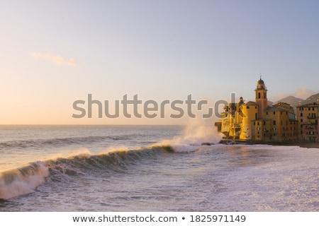 village · bord · de · l'eau · aube · plage · ciel · bâtiment - photo stock © anshar