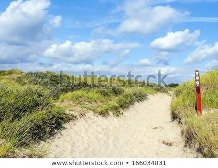 Mensen lopen strand eiland Denemarken natuur Stockfoto © jeancliclac