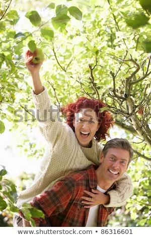 montaj · çift · üretmek · ağaç · elma - stok fotoğraf © monkey_business