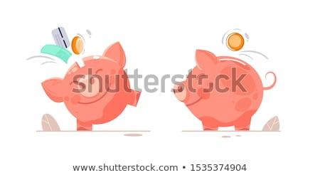 banku · piggy · ilustracja · wektora · ikona · różowy · ceny - zdjęcia stock © orensila