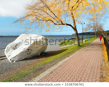白 岩 遊歩道 英国の カナダ 美しい ストックフォト © davidgn