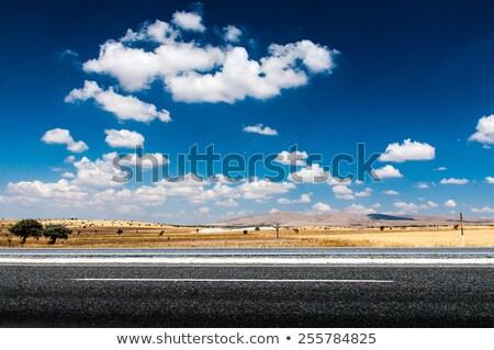 Scène vide route désert terres illustration Photo stock © colematt