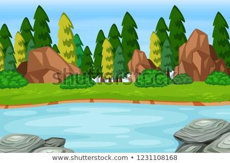 Ao ar livre mata lago cena ilustração água Foto stock © bluering