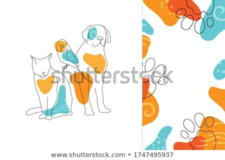 állatorvosi · szalag · színes · madár · illusztráció · orvos - stock fotó © colematt