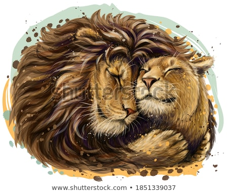Lion and Lioness, Wildlife Animal, Leo Vector Stock photo © robuart