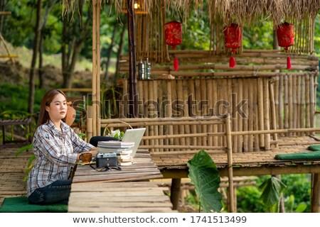 kadın · bahçe · portre · rahatlatıcı - stok fotoğraf © dash