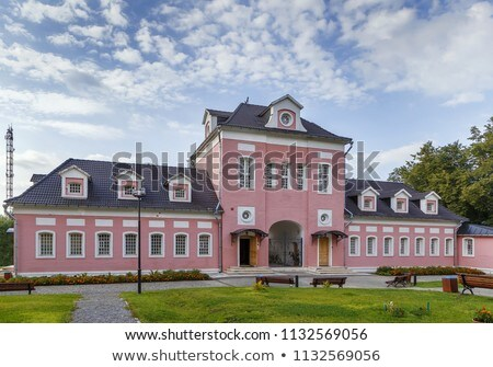 Manor in Bolshie Vyazyomy, Russia Stock photo © borisb17