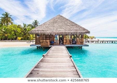 água Maldivas 24 ponte praia tropical Foto stock © bloodua