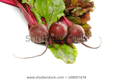 Bunch of Perfect Raw Beets and haulm Stock photo © zhekos