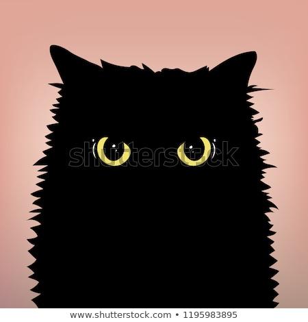 vector big evil cat stock photo © elisanth