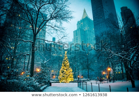 The New York City Madison Square park Stock photo © hanusst