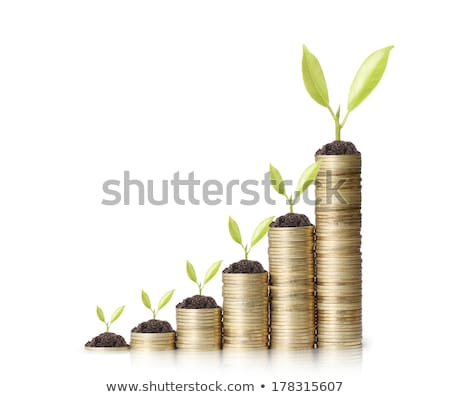 many coins in column and green plant isolated on white stock photo © tetkoren