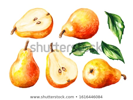 Pear on a branch Stock photo © Koufax73