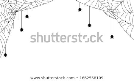 Teia branco ilustração fundo arte Foto stock © bluering