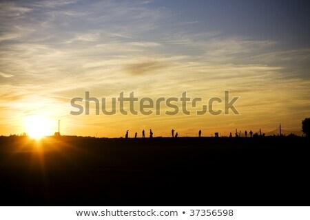 Homem condução alcance noite golfe camisetas Foto stock © IS2