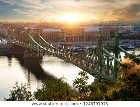 Sun over Liberty Bridge Stock photo © Givaga