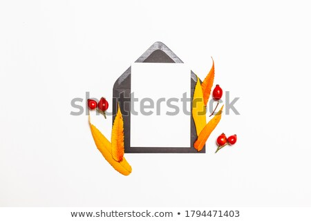 Composition of paper handcraft leaves and trees on an orange background with space for text. Hallowe Stock photo © artjazz