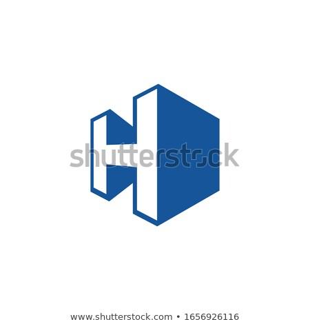Pijlen icon vector symbool logo Stockfoto © blaskorizov