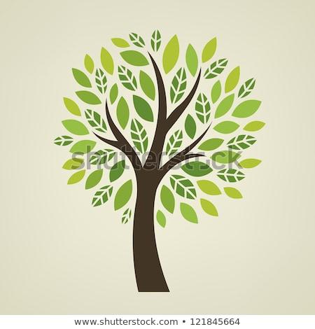 стилизованный вектора дерево иллюстрация символ Сток-фото © blaskorizov