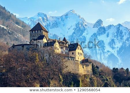 Castello Liechtenstein distanza view rock architettura Foto d'archivio © boggy