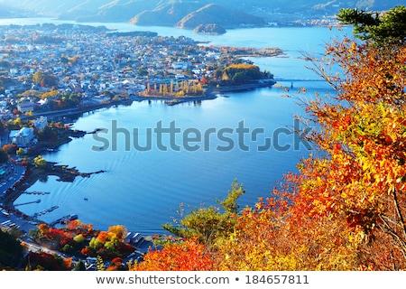 montanha · fuji · ver · lago · pôr · do · sol · panorama - foto stock © vichie81