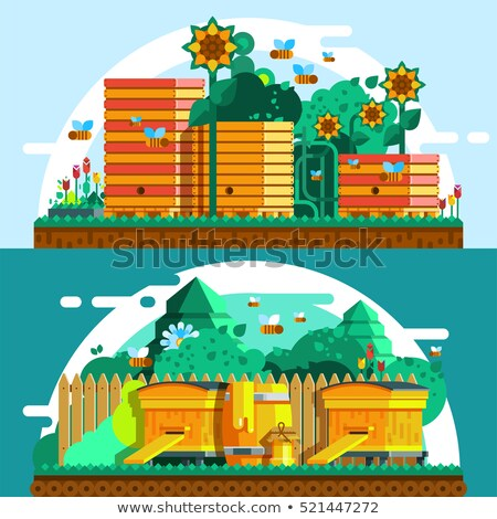 Set of Horizontal Banners about apiary Stock photo © netkov1