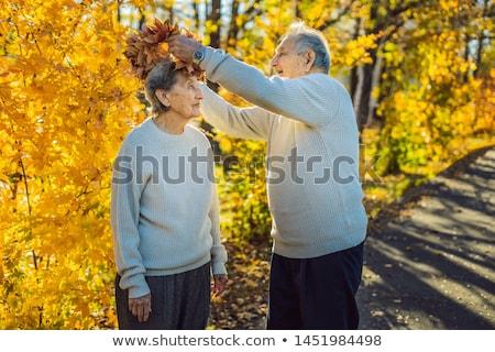 Feliz casal velho outono parque idoso Foto stock © galitskaya