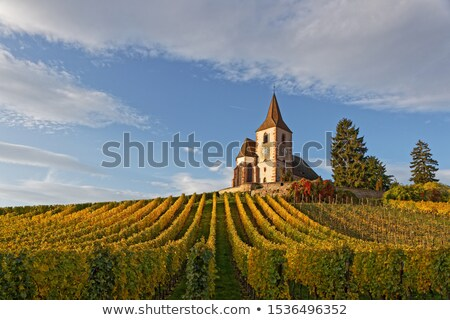 Fortified Church in Hunawihr, Alsace, France Stock photo © borisb17