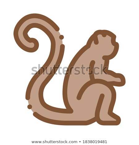 malaysian monkey icon vector outline illustration Stock photo © pikepicture