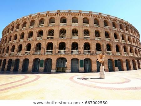 アリーナ バレンシア スペイン ヨーロッパ 建物 市 ストックフォト © Spectral