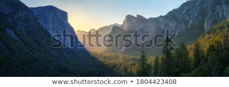 Landscape from a tunnel Stock photo © ABBPhoto
