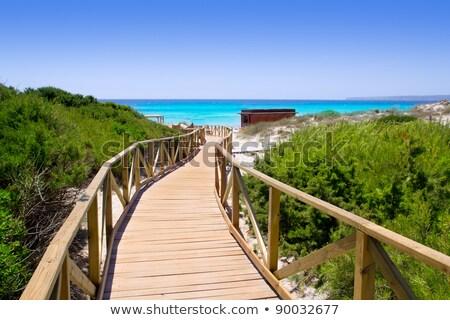 Migjorn Beach in Formentera, Balearic Islands, Spain Stock photo © nito