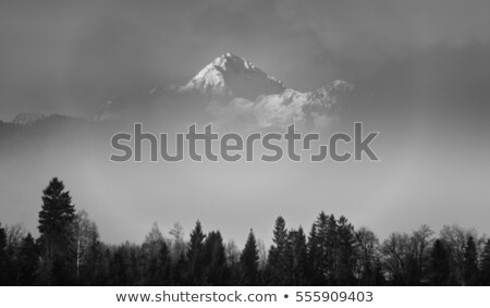 Triglav mountain peak in Slovenia, black and white Stock photo © stevanovicigor