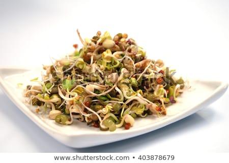 豆 · 孤立した · ボウル · 白 · 食品 - ストックフォト © digifoodstock