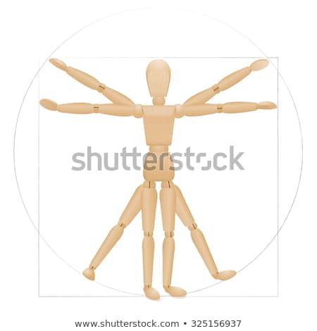 Fából készült férfi orvosi test személy emberi Stock fotó © njnightsky